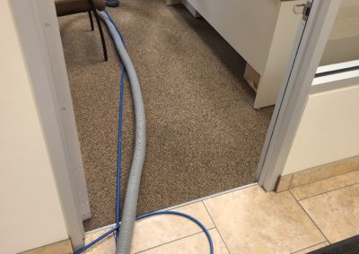 Carpet Cleaning Service in Utah